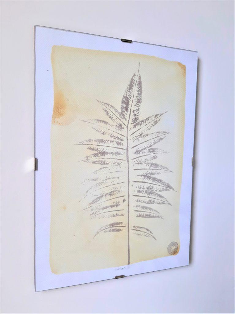 tableau herbier sumac 21x30cm